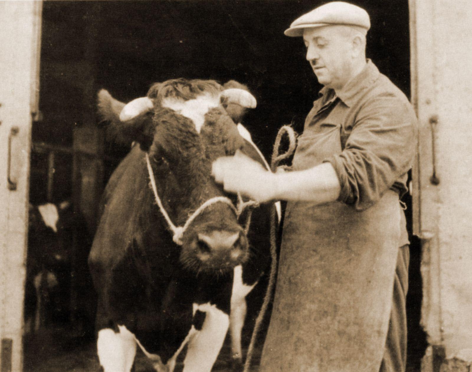 Viehhändler Fröhlich