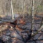 Blick auf einen noch immer qualmenden Waldboden