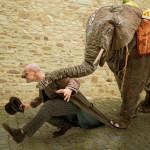 Bild Elefant mit Rüssel auf Schulter von Clown