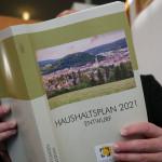 Eine Person liest im aufgeschlagenen Haushaltsplan 2021