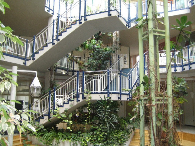 Treppenhaus mit Pflanzen der Fritz-Erler-Schule Tuttlingen