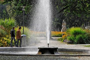 Stadtgarten mit Brunnen