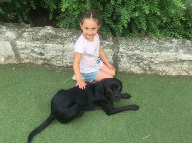 tiergestützte Pädagogik Kind mit Hund