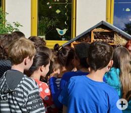 AlbertSchweitzerSchule