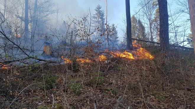 Bild vom Brand