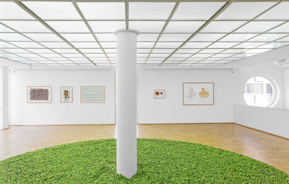 Kunstwerke mit Werken von Herman de Vries, 2016, in der Galerie Tuttlingen