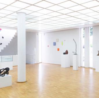 Die Künstler der Donaugalerie , Foto: Stanislaus Plewinski 2019
