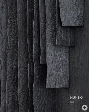 Cover Publikation Nuzio