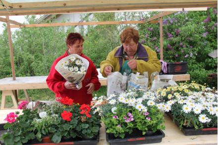 Pflanzenmarkt im FLM